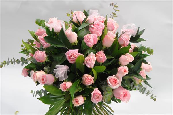 עיתים משלוחי פרחים בעמק יזרעאל